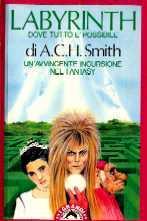 copertina di Labyrinth Dove tutto è possibile