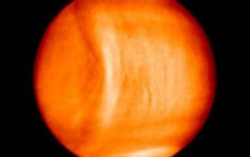 Registrata un'onda anomala su Venere