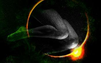Sensorium, il sesso al tempo del connettivismo