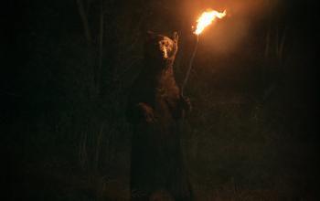 Quando gli orsi scoprirono il fuoco