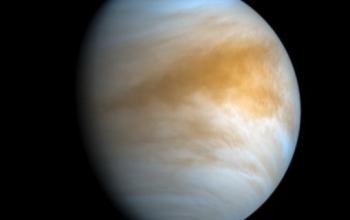 C'è vita su Venere