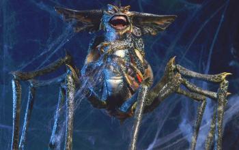 Gremlins 3: gli ultimi aggiornamenti sul sequel