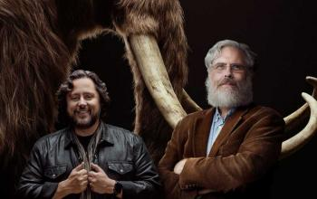 La Colossal vuole far resuscitare i mammut per combattere il cambiamento climatico