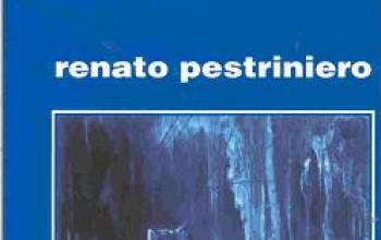 Le torri di Renato Pestriniero