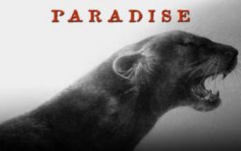 Il paradiso perduto di Benoît Sokal