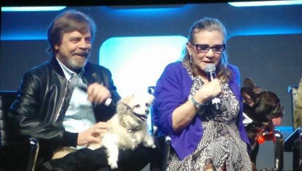 Mark Hamill la sua cagnolina Millie e Carrie Fisher e il suo cane Gary alla Star Wars Celebration Eurpe del 2016 foto di Francesca Tulli