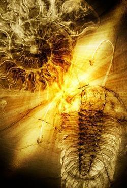 """""""Il sonno minerale delle due creature ha attraversato le ere del pianeta per arrivare fino a loro, come se avessero avuto un ricordo da consegnare. L'eco del messaggio, se mai uno c'è stato, è ormai spenta da tempo."""" Immagine elaborata da Giorgio Raffaelli."""