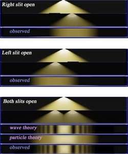 L'esperimento della doppia fenditura. Dall'altro verso il basso, con la sola fenditura destra aperta o con la sola fenditura sinistra la luce si diffonde sullo schermo in maniera uniforme e familiare. Se invece le due fenditure sono aperte contemporaneamente non si osserva la sovrapposizione semplice dei due effetti, che si osserverebbe se la luce avesse una natura esclusivamente particellare, bensì una figura d'interferenza che ne conferma la natura ondulatoria.