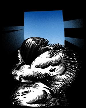 Illustrazione di Luca Vergerio