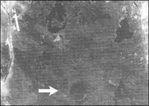L'area di impatto della meteora nel sud dell'Iraq (Telegraph)