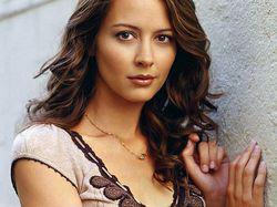 Amy Acker: dottoressa Saunders in <i>Dollhouse</i>, Kelly Peyton in <i>Alias</i>, sorella di Myka in <i>Warehouse 13</i> e diabolica Root in <i>Person of Interest</i>