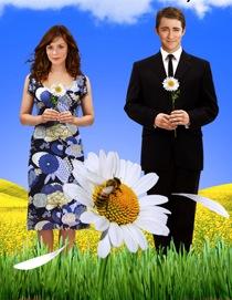 Lee Pace e Anna Friel di <i>Pushing Daisies</i>