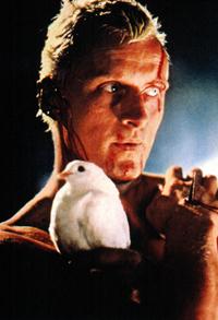 Roy Batty, interpretato da Rutger Hauer nel cult movie del 1982 Blade Runner, è un replicante da combattimento che si ribella ai suoi costruttori...