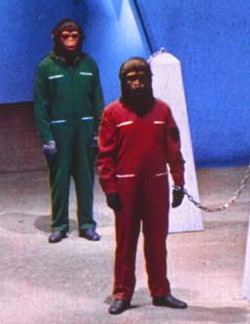 Scimmie al lavoro in <i>1999: la conquista della Terra</i>, quarta puntata del ciclo del <i>Pianeta delle scimmie</i>