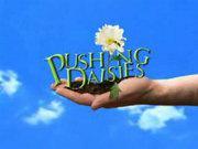 Pushing Daisies (Pilot)