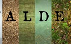 Ritorno a Walden Pond