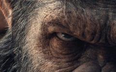 5 cose da sapere sulla saga de Il Pianeta delle Scimmie