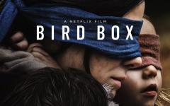 """Bird Box: da domani su Netflix la """"risposta"""" a A Quiet Place"""