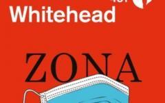 Zona Uno. il mondo dopo la pandemia