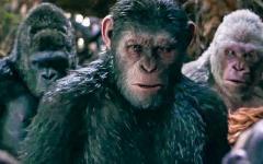 Il pianeta delle scimmie, parla del regista del prossimo capitolo