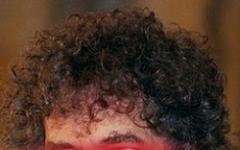 Bob Dylan è un cylon