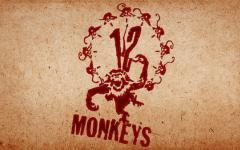 Syfy prepara Warriors of Oz e L'esercito delle 12 scimmie