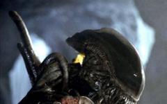 Tremate, Alien vs Predator II si farà