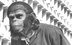 Confermato il prequel del Pianeta delle scimmie?