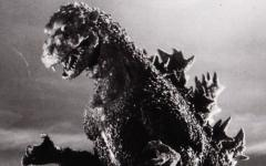 Godzilla... si gira!