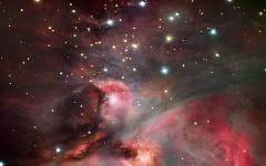 La nebulosa di Orione fa luce sui segreti della vita