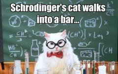 Fantascienza.com, il meglio della settimana del gatto di Schrödinger