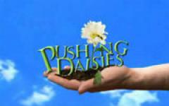 Pushing Daisies (Pilot)