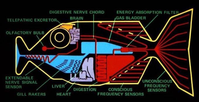 """Il pesce di Babele nella versione televisiva BBC: """"si ciba dell'energia delle onde cerebrali, assorbendo frequenze inconsce ed espellendo una matrice di frequenze consce verso i centri cerebrali del linguaggio. La conseguenza pratica è che se ve ne ficcate uno nell'orecchio, comprenderete istantaneamente qualunque cosa, in qualunque lingua""""."""