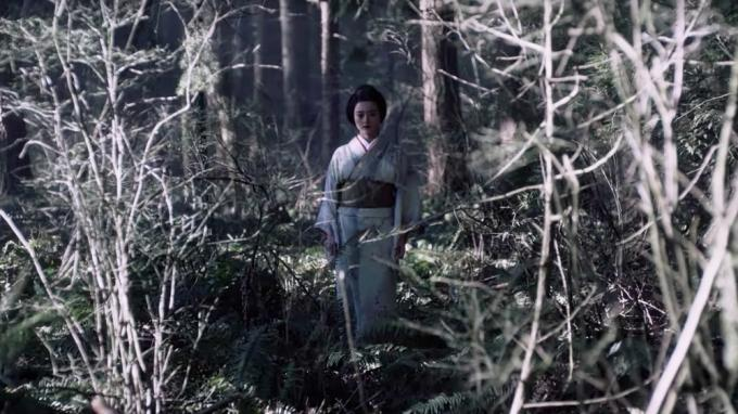 No, non seguirla nel bosco...
