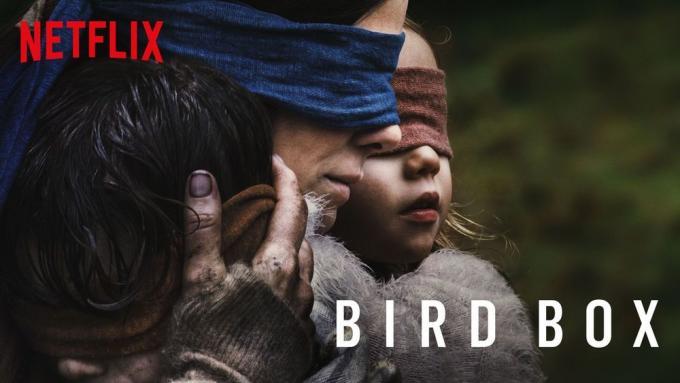 Bird Box a Roma in futuro?