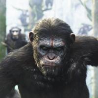 War of the Planet of the Apes: torniamo ancora sul Pianeta delle Scimmie