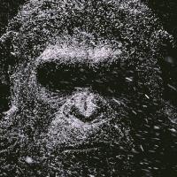 The War: il Pianeta delle Scimmie, ecco il secondo trailer