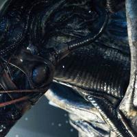 Ritorno al pianeta Alien