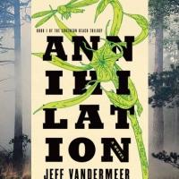 Annihilation: il film è sconvolgente, parola dell'autore Jeff VanderMeer