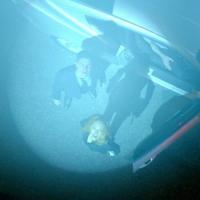 X-Files stagione 11: come saranno i primi cinque episodi