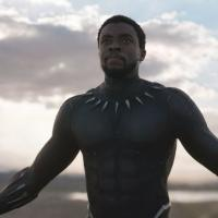 Black Panther è il film di supereroi che ha incassato di più (in USA)
