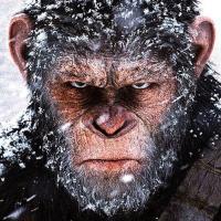 È ufficiale, la Disney riporta in azione Il pianeta delle scimmie, ma come?