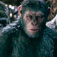 Il pianeta delle scimmie, parla il regista del prossimo capitolo