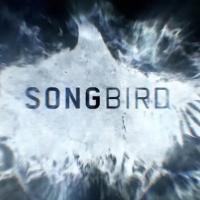 Songbird, benvenuti nel 2024, dove il covid-23 è diventato una minaccia mortale