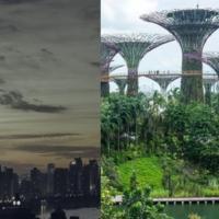 Distopia versus Solarpunk: una riflessione