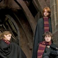 Harry Potter in Italia, è record