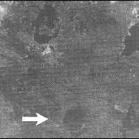 La meteora che distrusse Babilonia