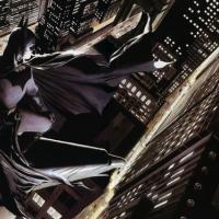 Gotham trova Bruce Wayne e Catwoman