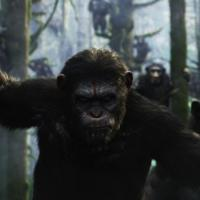 Dawn of the Planet of the Apes, primo trailer